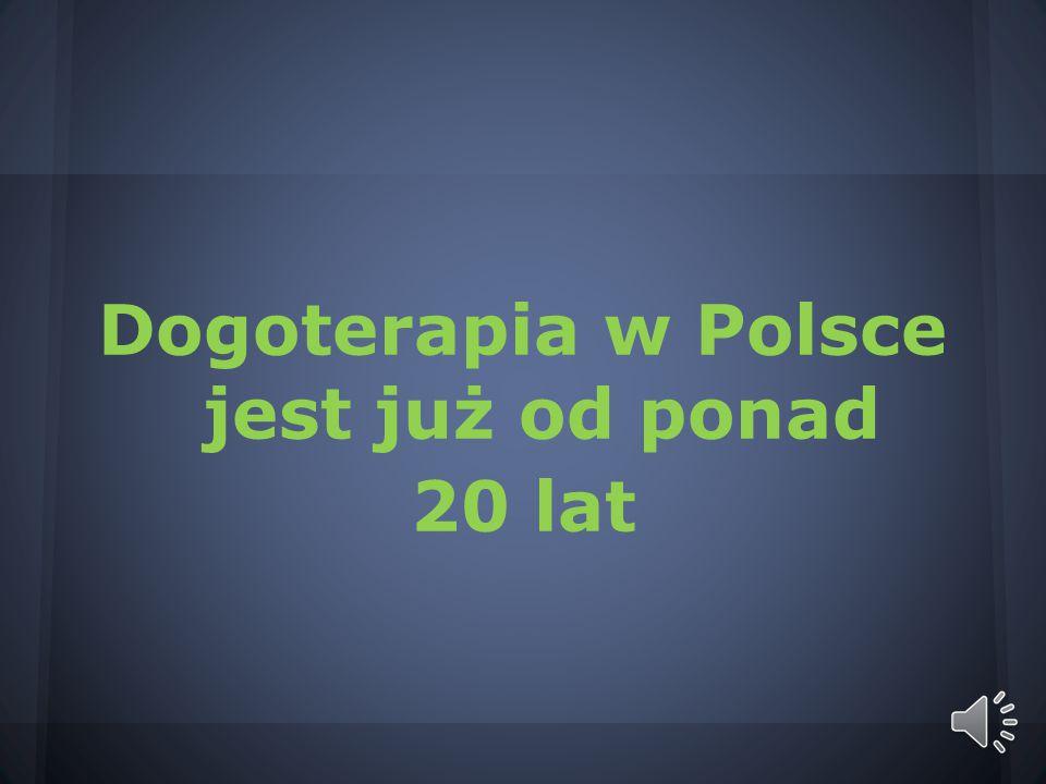 Dogoterapia w Polsce jest już od ponad 20 lat