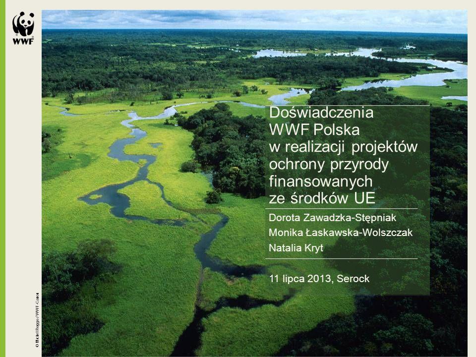 """Projekt """"Ochrona niedźwiedzia brunatnego Ursus arctos w polskiej części Karpat źródło finansowania: 85% - Unia Europejska ze środków Europejskiego Funduszu Rozwoju Regionalnego w ramach programu Infrastruktura i Środowisko 14% - Narodowy Fundusz Ochrony Środowiska i Gospodarki Wodnej 1% - wkład własny (WWF) wartość projektu: 1 800 000,00 zł okres realizacji: od 2011-10-01 do 2014-06-30 Projekt współfinansowany przez Unię Europejską ze środków Europejskiego Funduszu Rozwoju Regionalnego w ramach Programu Infrastruktura i Środowisko"""