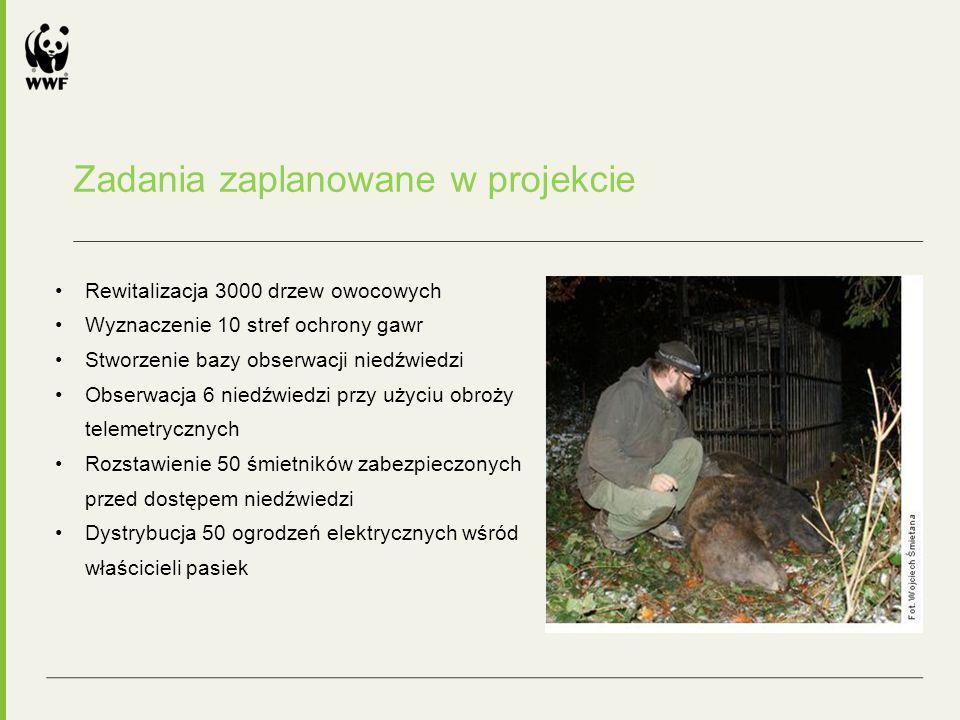 Zadania zaplanowane w projekcie Rewitalizacja 3000 drzew owocowych Wyznaczenie 10 stref ochrony gawr Stworzenie bazy obserwacji niedźwiedzi Obserwacja 6 niedźwiedzi przy użyciu obroży telemetrycznych Rozstawienie 50 śmietników zabezpieczonych przed dostępem niedźwiedzi Dystrybucja 50 ogrodzeń elektrycznych wśród właścicieli pasiek