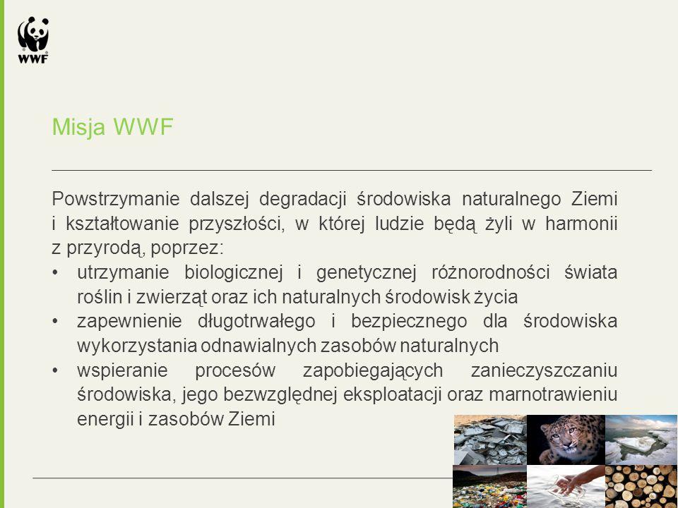 Misja WWF Powstrzymanie dalszej degradacji środowiska naturalnego Ziemi i kształtowanie przyszłości, w której ludzie będą żyli w harmonii z przyrodą, poprzez: utrzymanie biologicznej i genetycznej różnorodności świata roślin i zwierząt oraz ich naturalnych środowisk życia zapewnienie długotrwałego i bezpiecznego dla środowiska wykorzystania odnawialnych zasobów naturalnych wspieranie procesów zapobiegających zanieczyszczaniu środowiska, jego bezwzględnej eksploatacji oraz marnotrawieniu energii i zasobów Ziemi