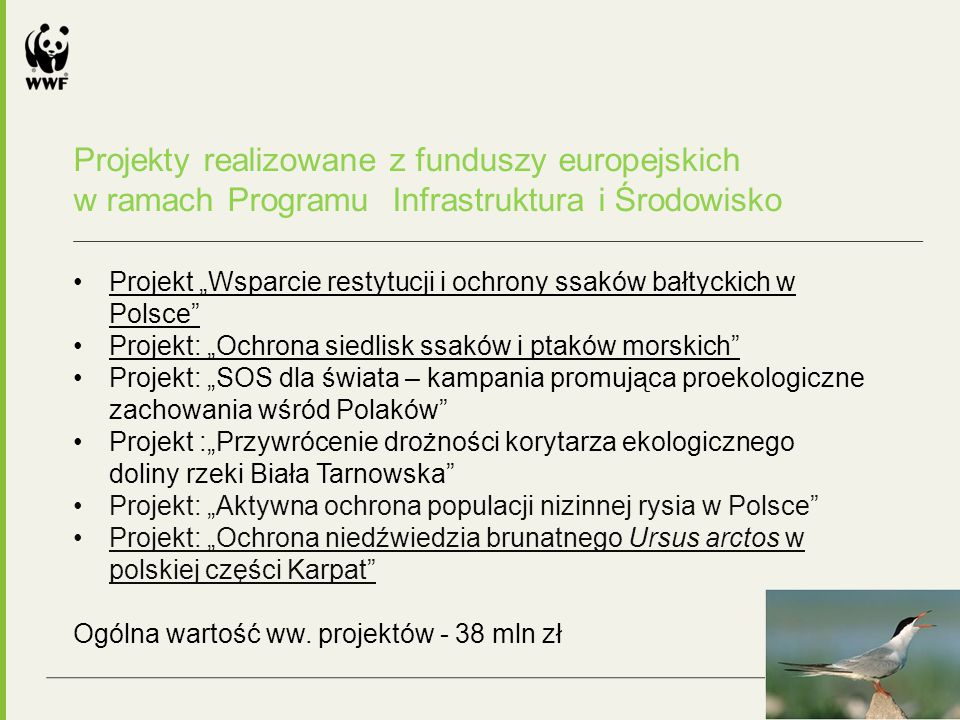 """Dziękujemy za uwagę Dorota Zawadzka-Stępniak, dzawadzka@wwf.pldzawadzka@wwf.pl Koordynator Pionu Polityki Środowiskowej Monika Łaskawska-Wolszczak mlaskawska@wwf.plmlaskawska@wwf.pl Kierownik projektu """"Siedliska morskie Natalia Kryt nkryt@wwf.plnkryt@wwf.pl Kierownik projektu """"Duże drapieżniki w Polsce www.wwf.pl © 2010, WWF."""