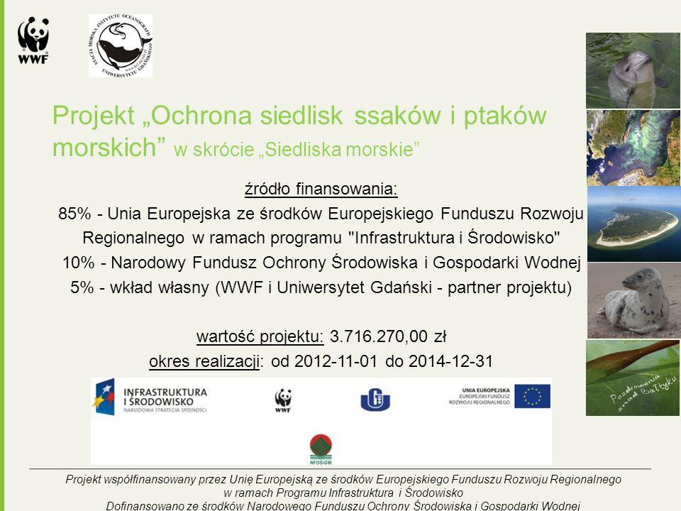 """Projekt """"Ochrona siedlisk ssaków i ptaków morskich w skrócie """"Siedliska morskie źródło finansowania: 85% - Unia Europejska ze środków Europejskiego Funduszu Rozwoju Regionalnego w ramach programu Infrastruktura i Środowisko 10% - Narodowy Fundusz Ochrony Środowiska i Gospodarki Wodnej 5% - wkład własny (WWF i Uniwersytet Gdański - partner projektu) wartość projektu: 3.716.270,00 zł okres realizacji: od 2012-11-01 do 2014-12-31 Projekt współfinansowany przez Unię Europejską ze środków Europejskiego Funduszu Rozwoju Regionalnego w ramach Programu Infrastruktura i Środowisko Dofinansowano ze środków Narodowego Funduszu Ochrony Środowiska i Gospodarki Wodnej"""