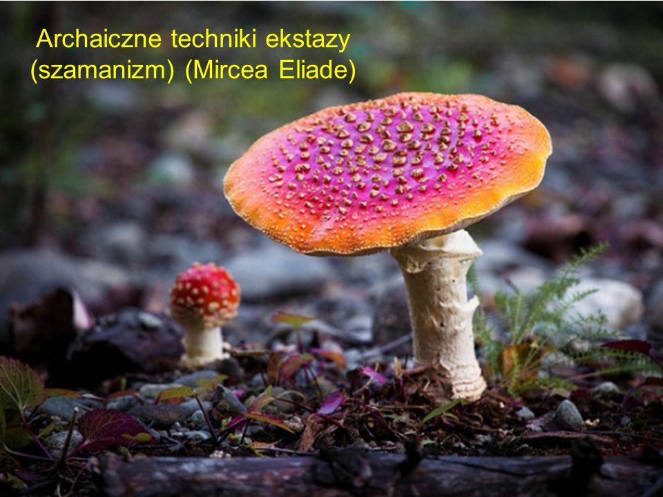 Archaiczne techniki ekstazy (szamanizm) (Mircea Eliade)