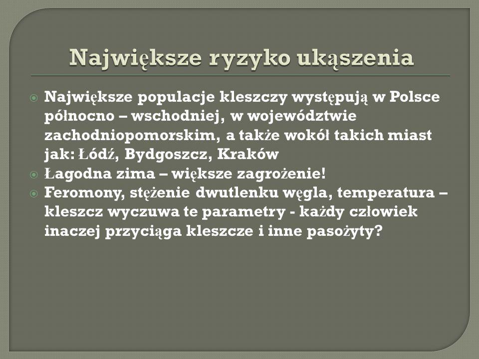  Najwi ę ksze populacje kleszczy wyst ę puj ą w Polsce pó ł nocno – wschodniej, w województwie zachodniopomorskim, a tak ż e wokó ł takich miast jak: