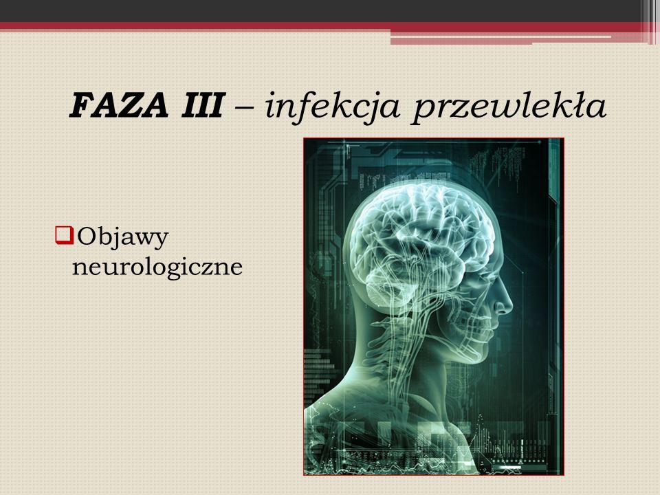 FAZA III – infekcja przewlekła  Objawy neurologiczne