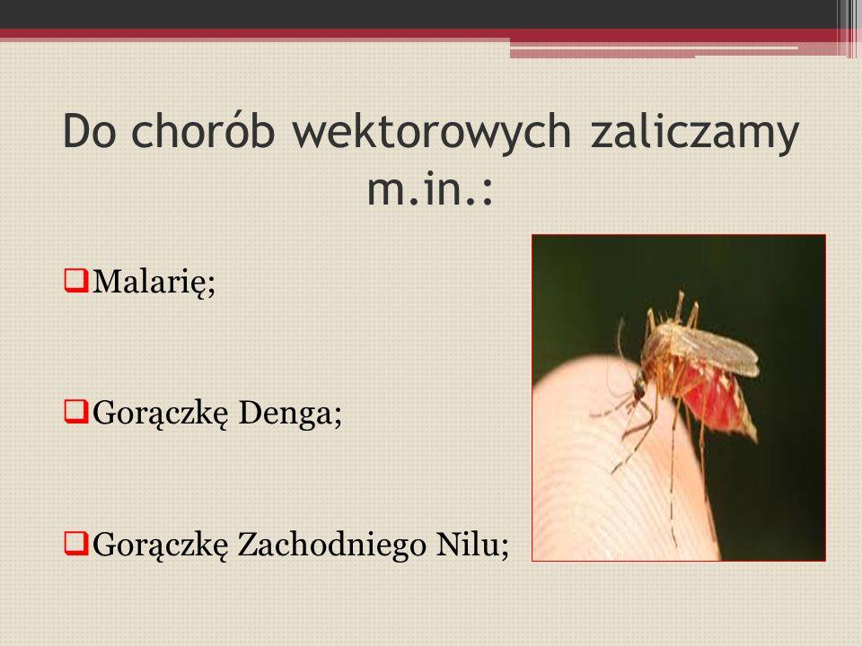 Do chorób wektorowych zaliczamy m.in.:  Malarię;  Gorączkę Denga;  Gorączkę Zachodniego Nilu;