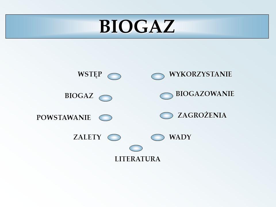 xWYKORZYSTANIE Wybór technologii produkcji biogazu zależy od wielu czynników, a najważniejsze to surowiec, z którego ma on być produkowany oraz ekonomiczna opłacalność, uwzględniająca poniesione nakłady inwestycyjne.
