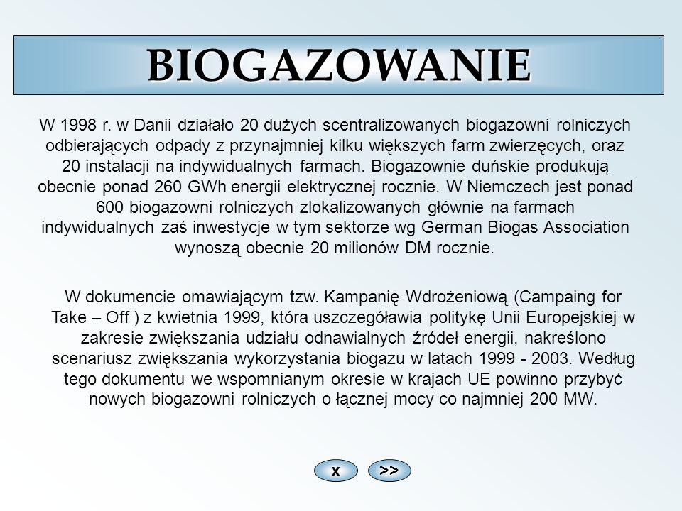 x>>BIOGAZOWANIE W 1998 r. w Danii działało 20 dużych scentralizowanych biogazowni rolniczych odbierających odpady z przynajmniej kilku większych farm