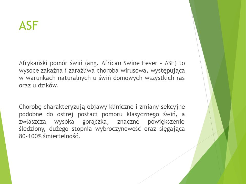 ASF Afrykański pomór świń (ang. African Swine Fever – ASF) to wysoce zakaźna i zaraźliwa choroba wirusowa, występująca w warunkach naturalnych u świń