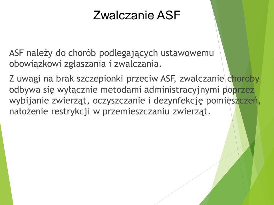 ASF należy do chorób podlegających ustawowemu obowiązkowi zgłaszania i zwalczania. Z uwagi na brak szczepionki przeciw ASF, zwalczanie choroby odbywa