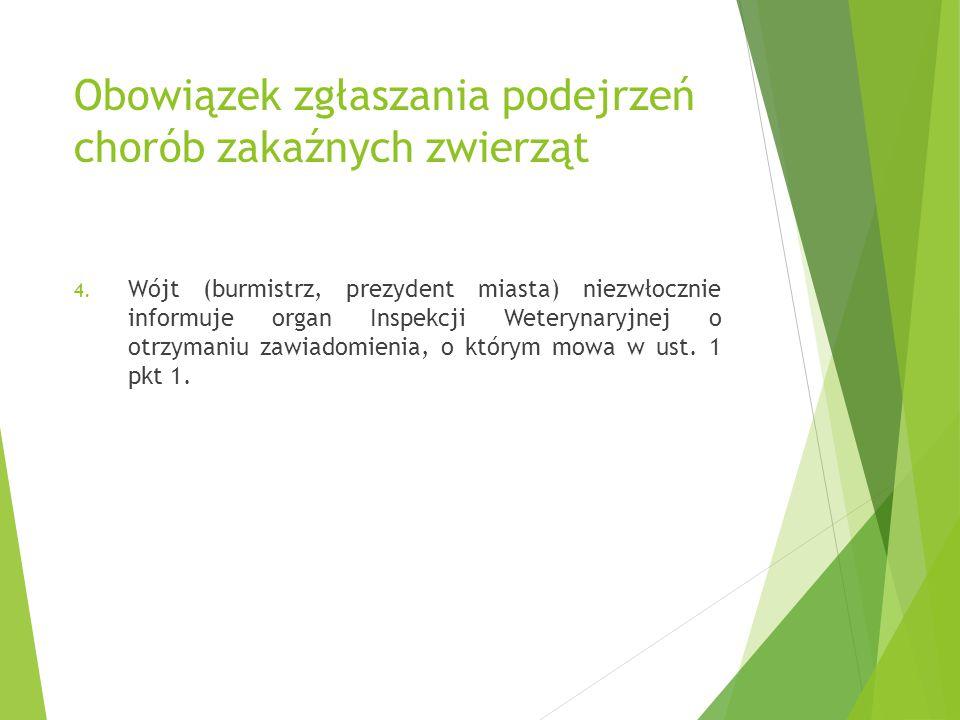 Obowiązek zgłaszania podejrzeń chorób zakaźnych zwierząt 4. Wójt (burmistrz, prezydent miasta) niezwłocznie informuje organ Inspekcji Weterynaryjnej o