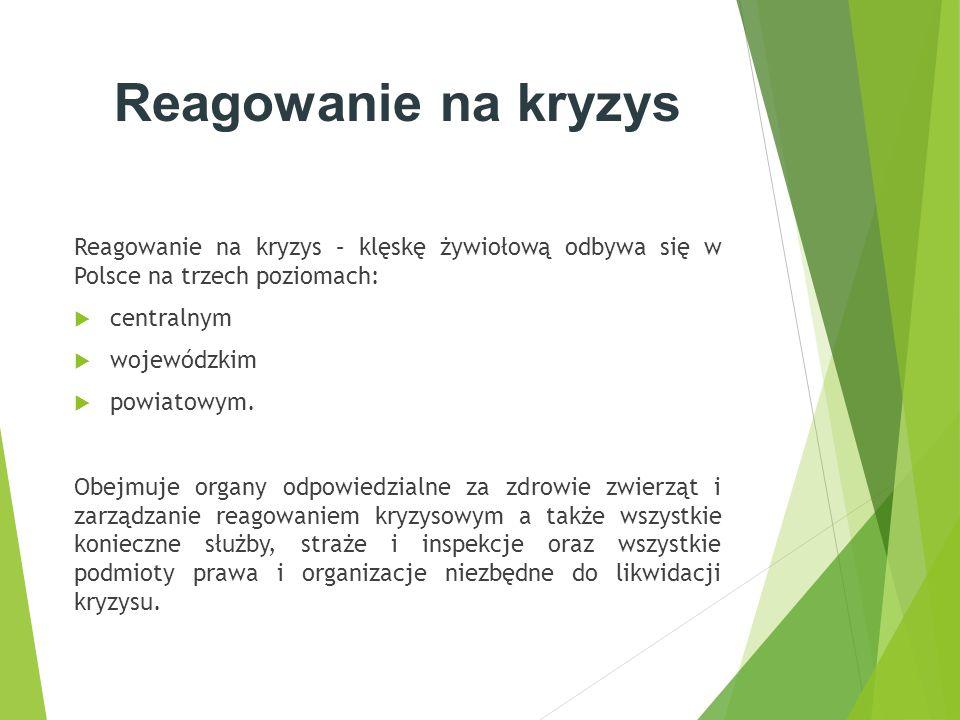 Reagowanie na kryzys Reagowanie na kryzys – klęskę żywiołową odbywa się w Polsce na trzech poziomach:  centralnym  wojewódzkim  powiatowym. Obejmuj