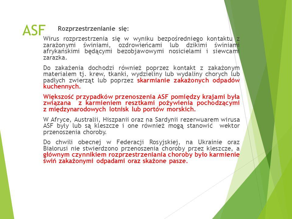 ASF u dzików na Litwie Dnia 29 stycznia 2014 r.