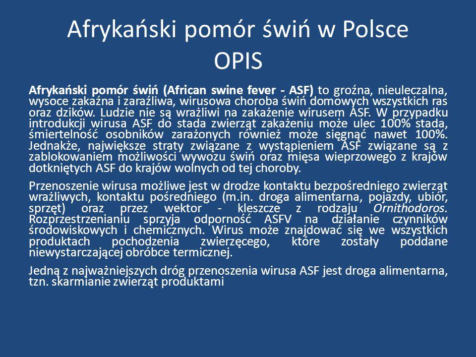 Afrykański pomór świń w Polsce ZNACZENIE Z uwagi na brak szczepionki przeciw ASF oraz brak możliwości leczenia choroby, zwalczanie choroby odbywa się wyłącznie metodami administracyjnymi poprzez wybijanie zwierząt, oczyszczanie i dezynfekcję pomieszczeń, nałożenie restrykcji w przemieszczaniu zwierząt.