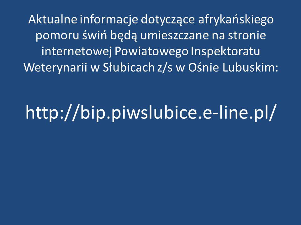 Aktualne informacje dotyczące afrykańskiego pomoru świń będą umieszczane na stronie internetowej Powiatowego Inspektoratu Weterynarii w Słubicach z/s