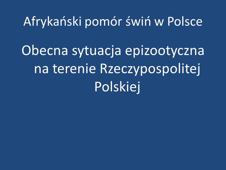 Afrykański pomór świń w Polsce Obecna sytuacja epizootyczna na terenie Rzeczypospolitej Polskiej
