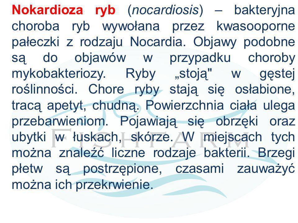 Nokardioza ryb (nocardiosis) – bakteryjna choroba ryb wywołana przez kwasooporne pałeczki z rodzaju Nocardia. Objawy podobne są do objawów w przypadku