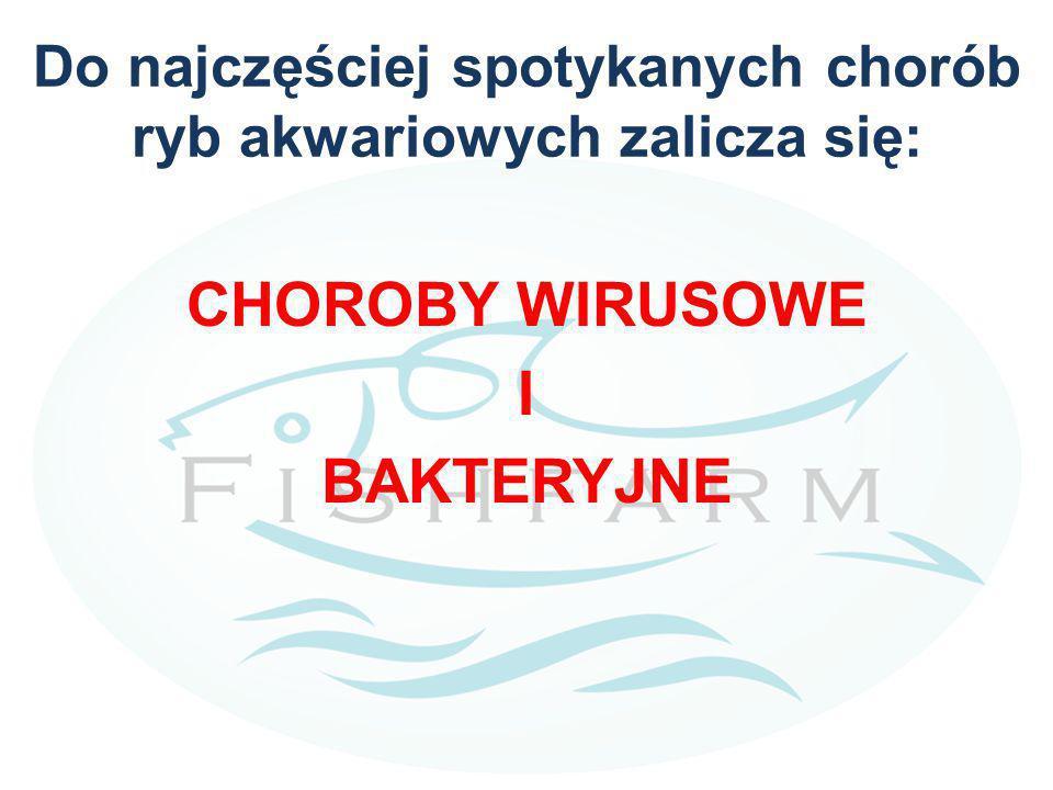 Do najczęściej spotykanych chorób ryb akwariowych zalicza się: CHOROBY WIRUSOWE I BAKTERYJNE