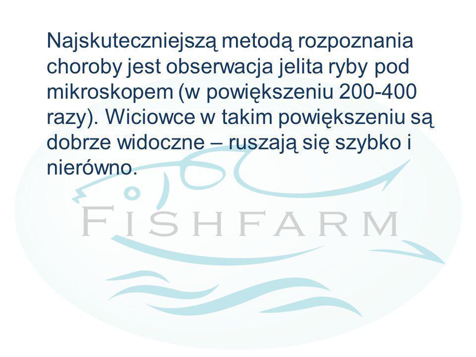 Najskuteczniejszą metodą rozpoznania choroby jest obserwacja jelita ryby pod mikroskopem (w powiększeniu 200-400 razy). Wiciowce w takim powiększeniu