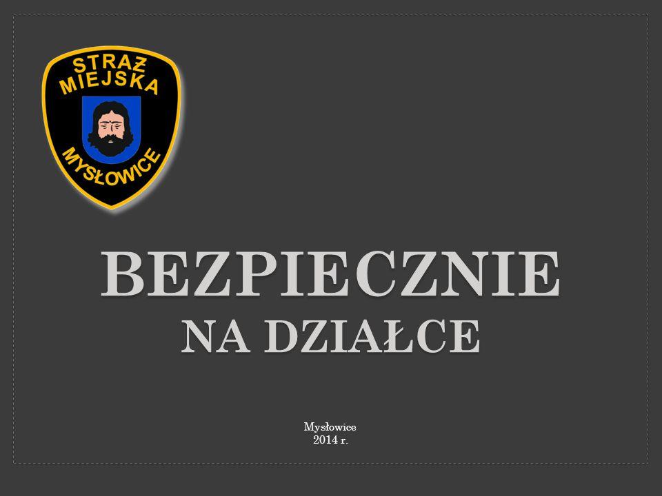 BEZPIECZNIE NA DZIAŁCE Mysłowice 2014 r.