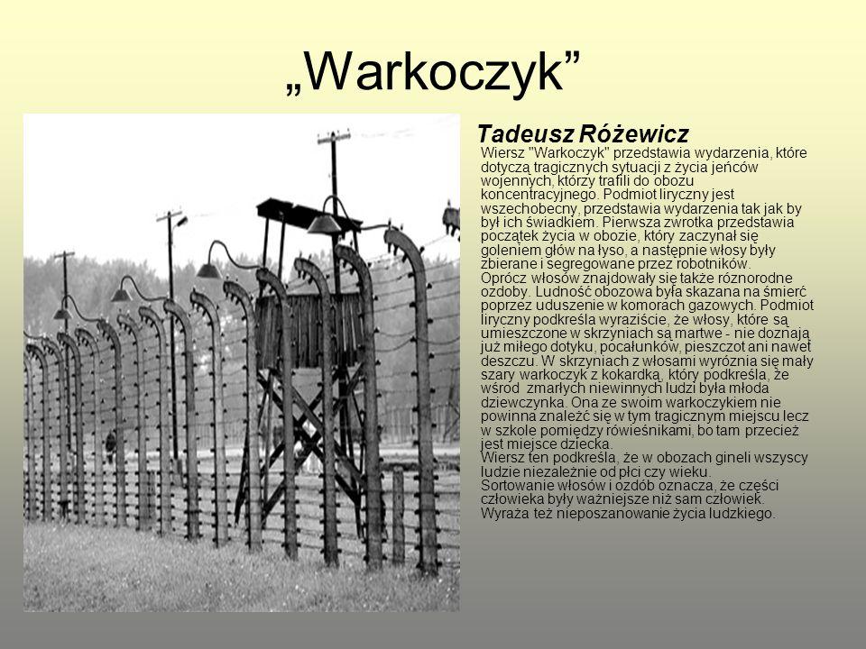 """""""Warkoczyk"""" Tadeusz Różewicz Wiersz"""