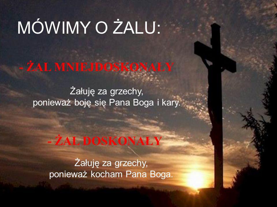 ŻAL ZA GRZECHY to: PPrawdziwy smutek z powodu popełnionych grzechów.