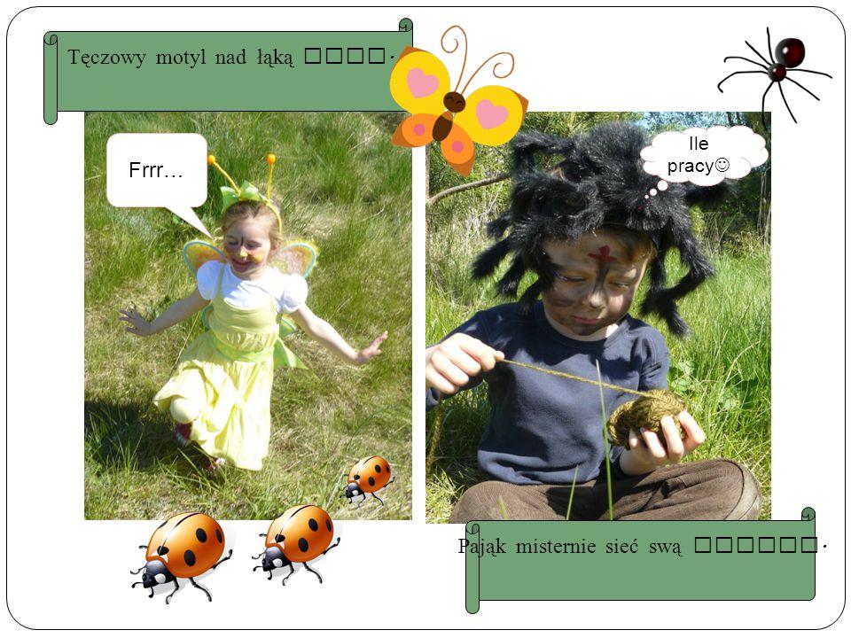 Frrr… Ile pracy Tęczowy motyl nad łąką lata. Pająk misternie sieć swą uplata.