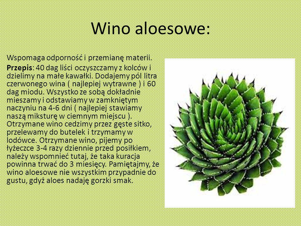 Wino aloesowe: Wspomaga odporność i przemianę materii.