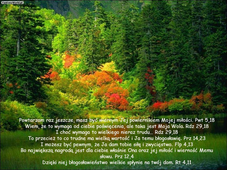 Powtarzam raz jeszcze, masz być wiernym Jej powiernikiem Mojej miłości.