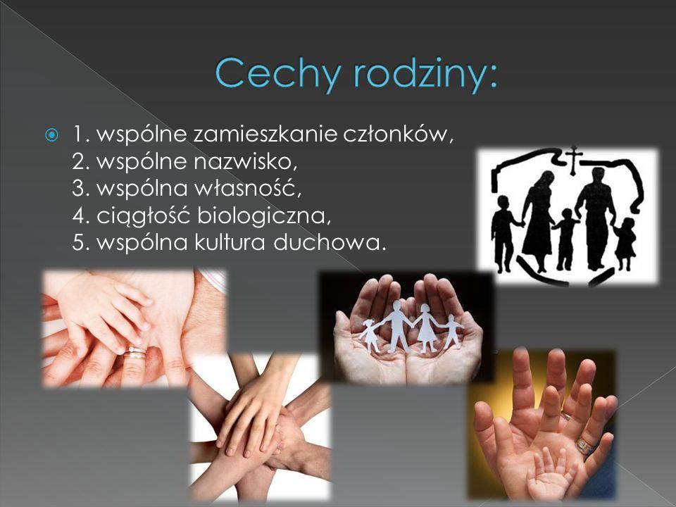  1. wspólne zamieszkanie członków, 2. wspólne nazwisko, 3. wspólna własność, 4. ciągłość biologiczna, 5. wspólna kultura duchowa.