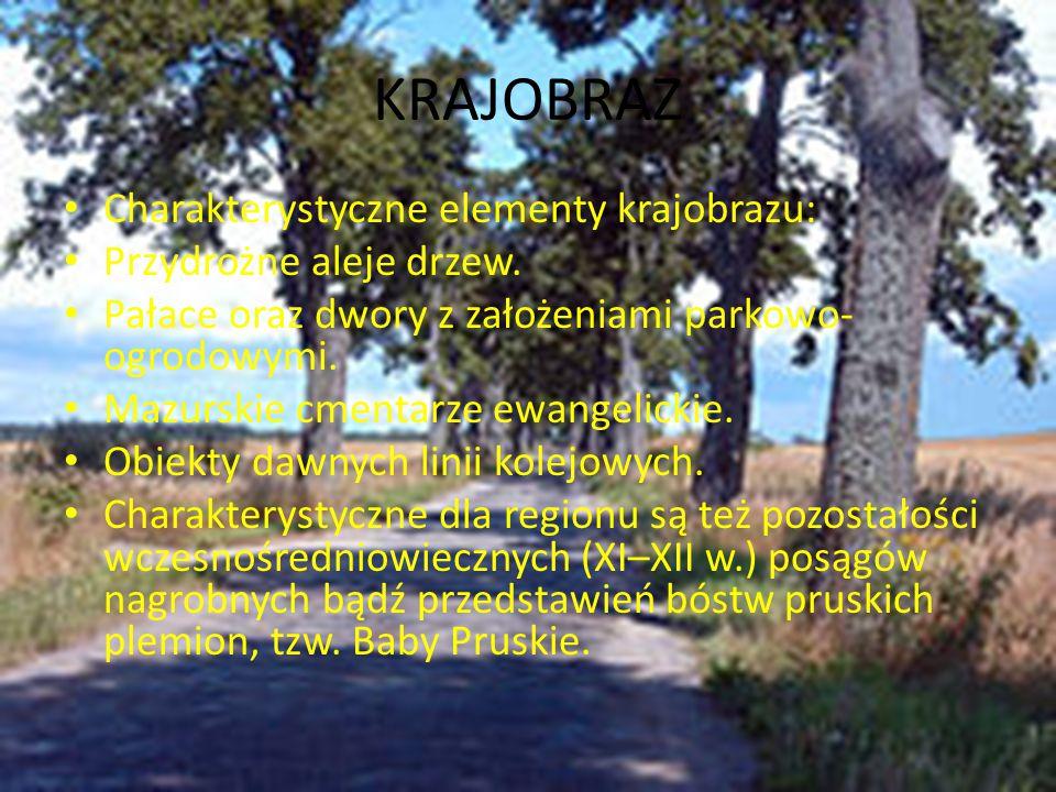 KRAJOBRAZ Charakterystyczne elementy krajobrazu: Przydrożne aleje drzew. Pałace oraz dwory z założeniami parkowo- ogrodowymi. Mazurskie cmentarze ewan