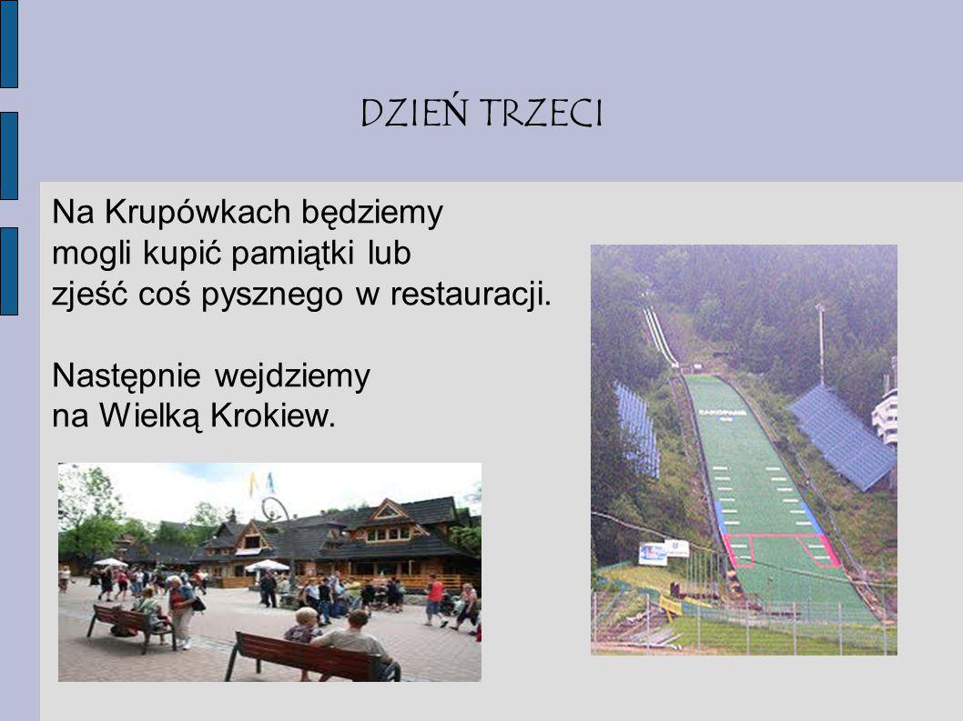 DZIE Ń CZWARTY W ostatni dzień wjedziemy kolejką na Gubałówkę, a podczas drogi powrotnej zahaczymy o Kopalnię soli w Wieliczce