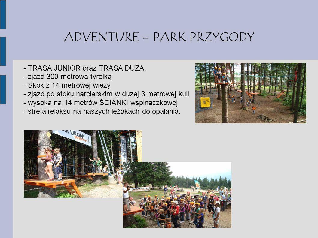 ADVENTURE – PARK PRZYGODY - TRASA JUNIOR oraz TRASA DUŻA, - zjazd 300 metrową tyrolką - Skok z 14 metrowej wieży - zjazd po stoku narciarskim w dużej