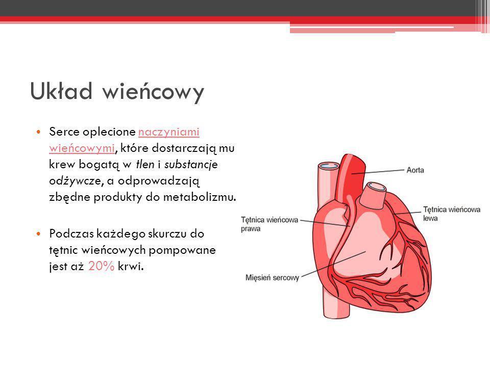 Układ wieńcowy Serce oplecione naczyniami wieńcowymi, które dostarczają mu krew bogatą w tlen i substancje odżywcze, a odprowadzają zbędne produkty do