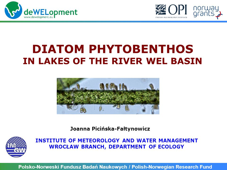 Polsko-Norweski Fundusz Badań Naukowych / Polish-Norwegian Research Fund DIATOM PHYTOBENTHOS IN LAKES OF THE RIVER WEL BASIN Joanna Picińska-Fałtynowicz INSTITUTE OF METEOROLOGY AND WATER MANAGEMENT WROCŁAW BRANCH, DEPARTMENT OF ECOLOGY