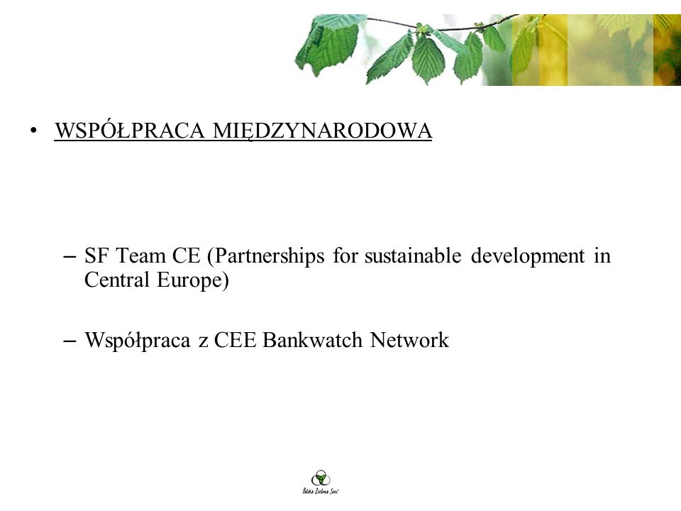 WSPÓŁPRACA MIĘDZYNARODOWA – SF Team CE (Partnerships for sustainable development in Central Europe) – Współpraca z CEE Bankwatch Network