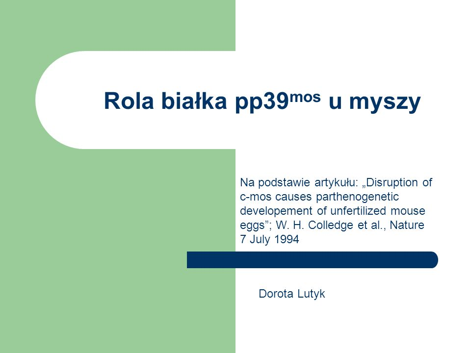 Rola białka pp39 mos u myszy Na podstawie artykułu: Disruption of c-mos causes parthenogenetic developement of unfertilized mouse eggs; W.