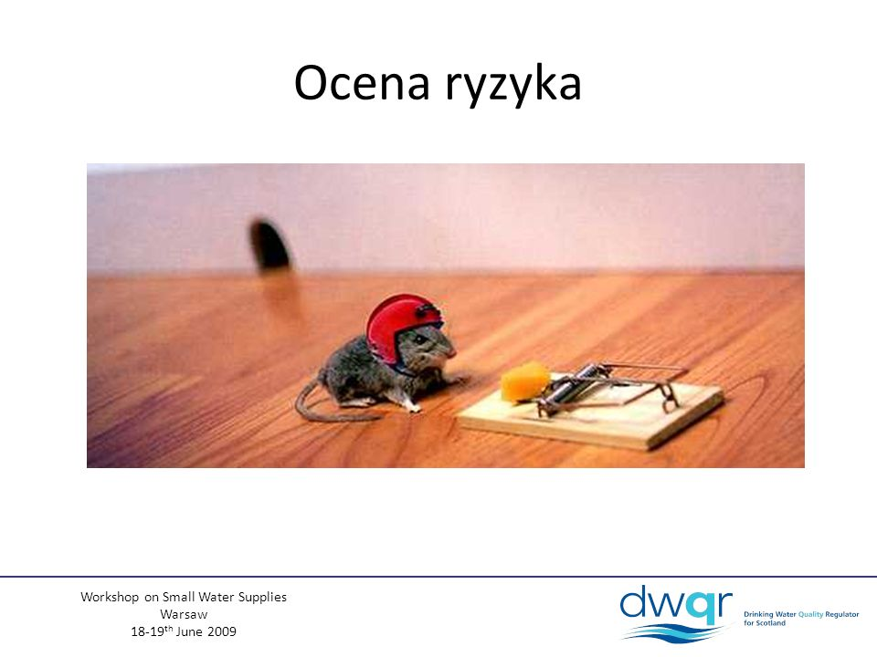 Workshop on Small Water Supplies Warsaw 18-19 th June 2009 Ocena ryzyka