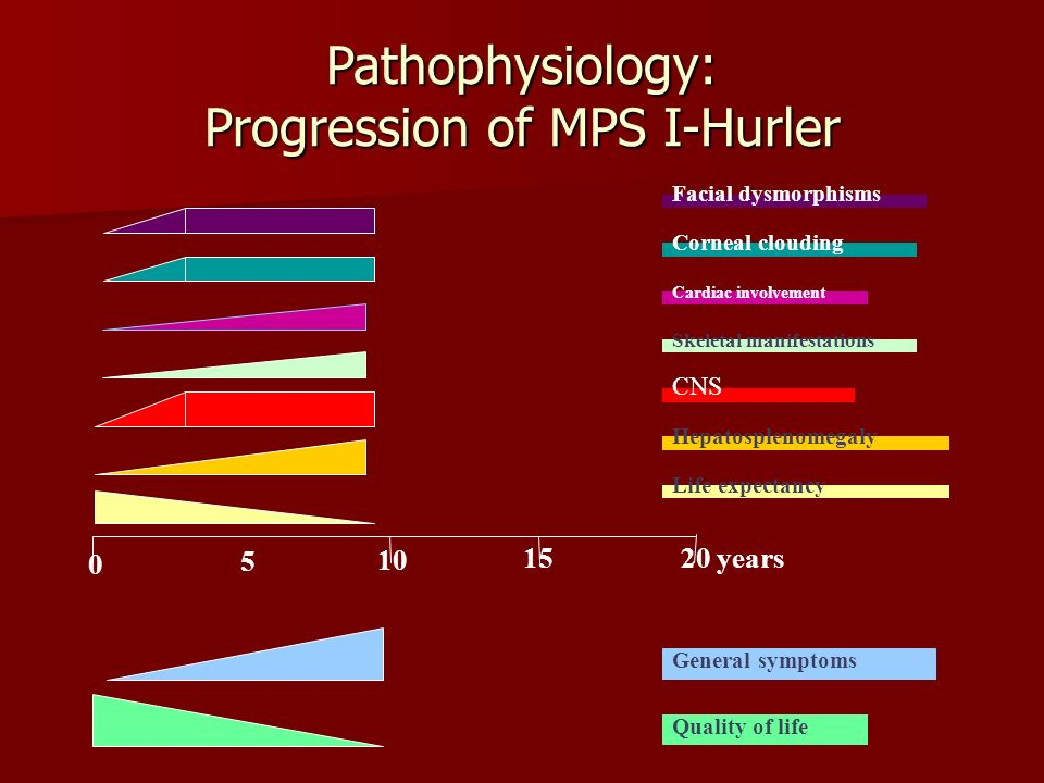10 0 5 15 Hepatosplenomegaly CNS Skeletal manifestations General symptoms Quality of life Pathophysiology: Progression of MPS I-Hurler 20 years Life expectancy Facial dysmorphisms Corneal clouding Cardiac involvement