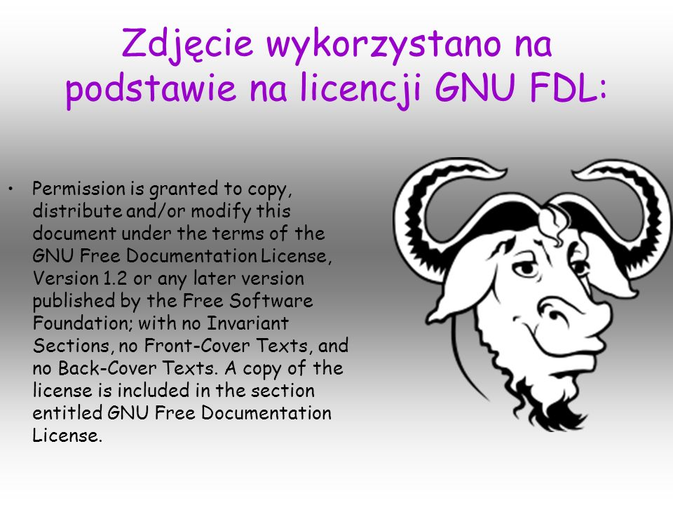 Zdjęcie wykorzystano na podstawie na licencji GNU FDL: Permission is granted to copy, distribute and/or modify this document under the terms of the GNU Free Documentation License, Version 1.2 or any later version published by the Free Software Foundation; with no Invariant Sections, no Front-Cover Texts, and no Back-Cover Texts.